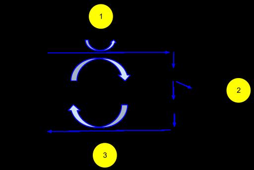http://upload.wikimedia.org/wikipedia/commons/thumb/0/08/Ethanol_fermentation-1.svg/512px-Ethanol_fermentation-1.svg.png