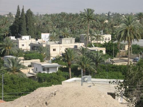 Jericho - The City of Palms