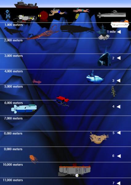 http://images.suite101.com/3063559_com_i_715_diving_depths_of_animals_and_machines_nasa.gif