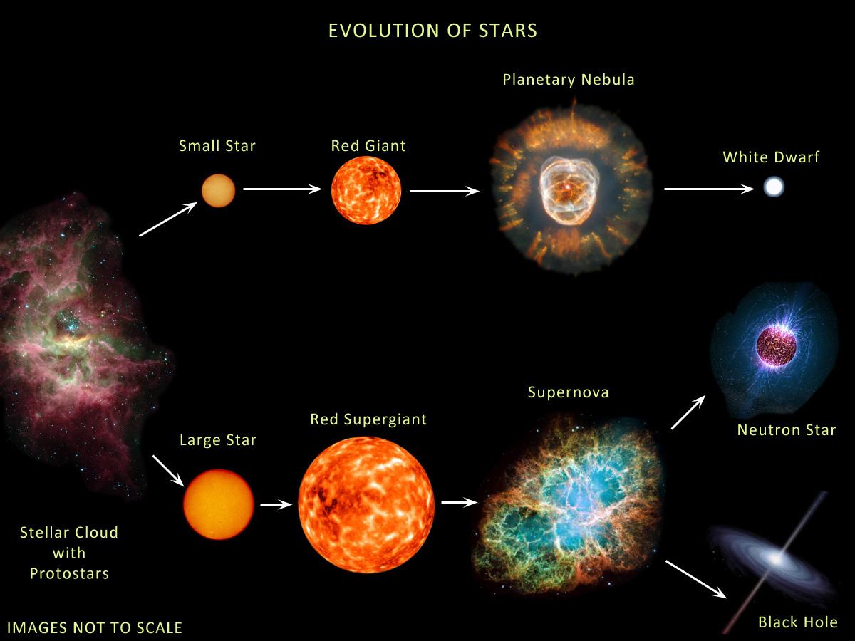 http://essayweb.net/astronomy/images/Stellar_Evolution_large.jpg