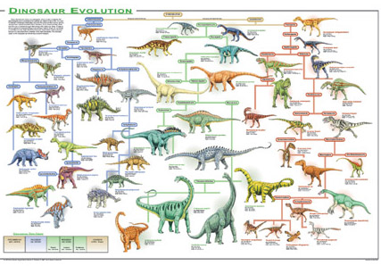 http://blog.everythingdinosaur.co.uk/wp-content/uploads/old/dinosaur_evolution_posterjp.jpg