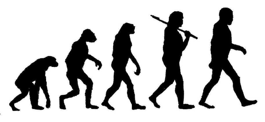 http://wolfevolution.webs.com/images/evolutionhumans.jpg