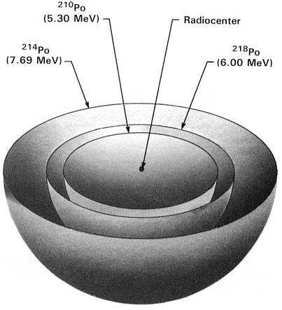 http://i231.photobucket.com/albums/ee241/A_Force_of_Nature/Polonium-218Halo.png