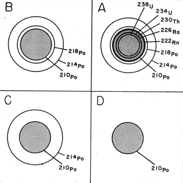 http://ncse.com/files/images/Collins%20Fig%202.preview.jpg