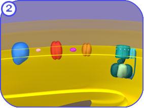 http://vcell.ndsu.edu/animations/atpgradient/images/atpGradientStills-FL-02.jpg