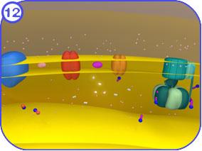 http://vcell.ndsu.nodak.edu/animations/etc/images/ETCStills-12.jpg