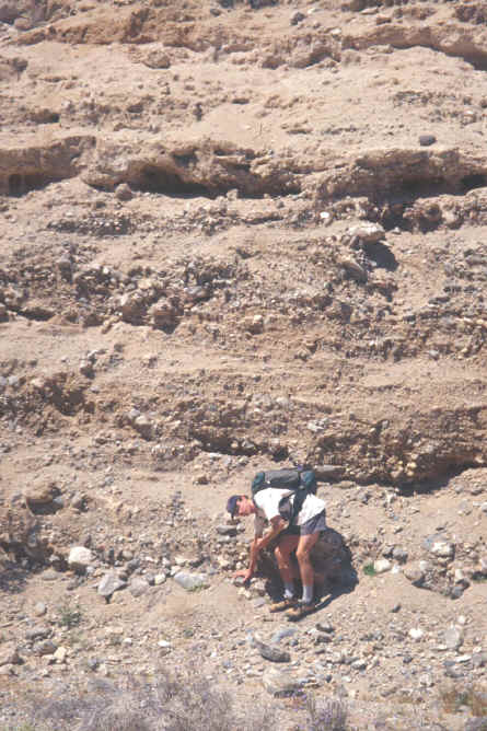 http://geology.campus.ad.csulb.edu/people/bperry/Sedimentary%20Rocks%20Tour/sedimentary%20rocks%20images/sed%20structures/sed1multiplegradedbeds1.jpg