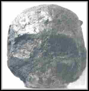 http://www.anomalies-unlimited.com/Coal/IMAG0000.JPG